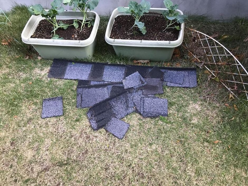 庭先に落ちたアスファルトシングル